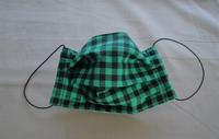 Image Black/Green Check Face Mask